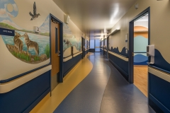 Corridor Overall View